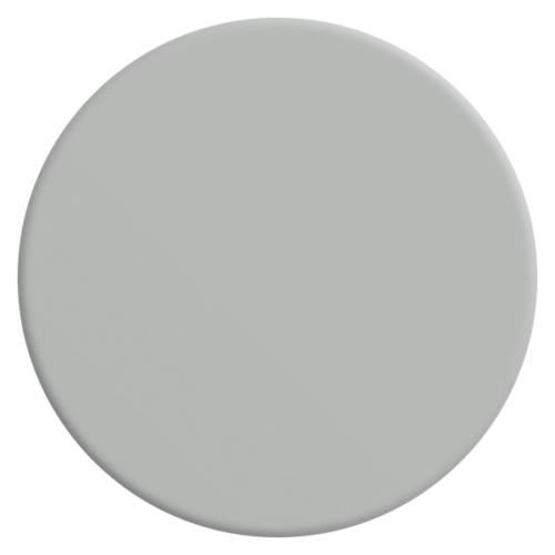 gris-sarrazin