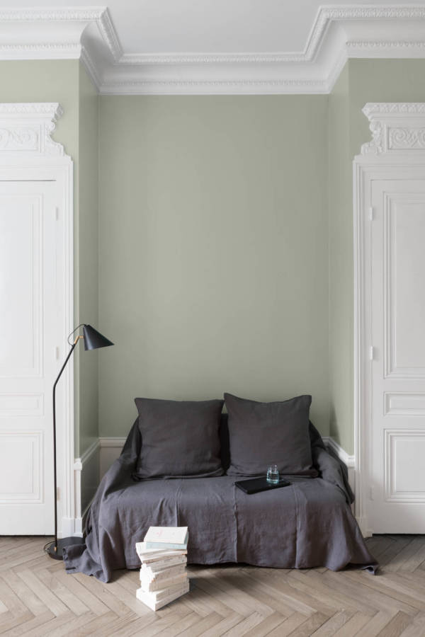 peinture-murale-Blanc-Edelweiss