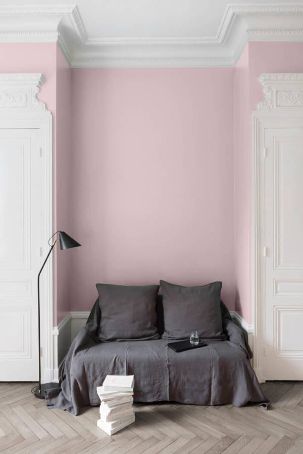 peinture-murale-Rose-Pamoison