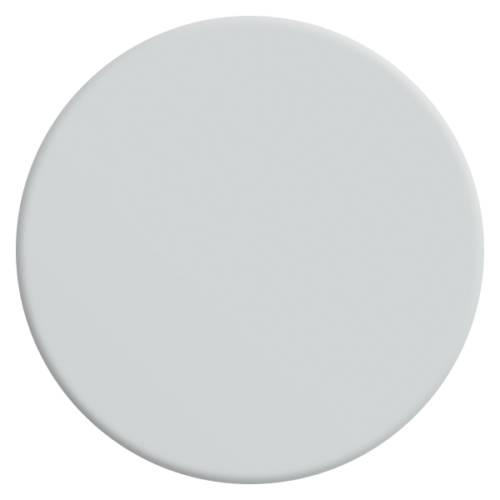 velours-de-peinture-couleur-blanc-basilique