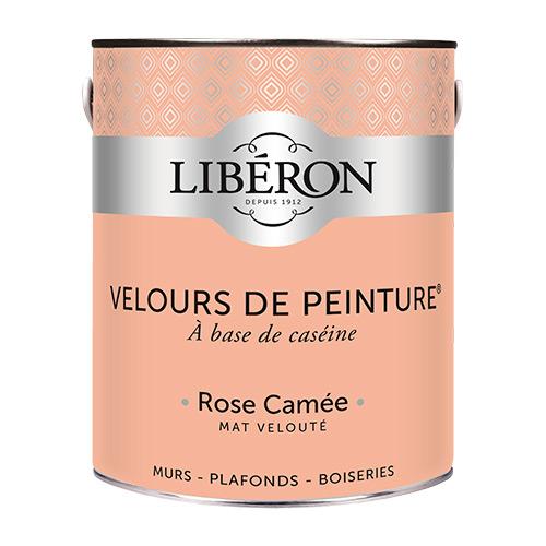 Peinture-murale-Velours-de-peinture-Liberon-25L-couleur-rose-camée
