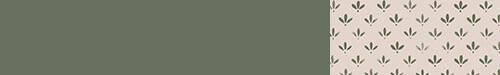 association-couleur-papier-peint-florette-2-peinture-murale-vert-treillis